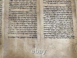 1600 Rare Antique Tunisian Torah Scroll Leviticus-Tunisia C. 17th Century Judaica