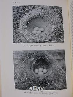BIRD EGGS & NESTS 8 Color Plates ANTIQUE PRIZE BINDING Ornithology WATCHING Rare