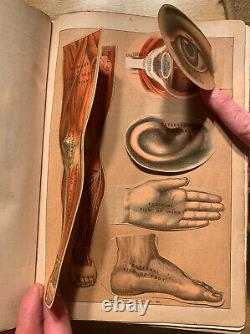 Rare Antique Medical Book The Modern Family Physician & Hygenic Guide 1889